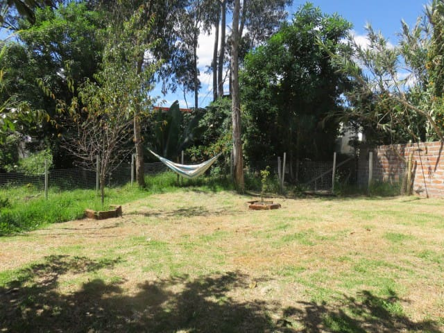 Fenced side garden with hammock.