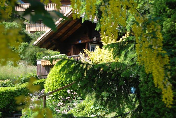 Hüttli mit Balkon und Seesicht - Brienz