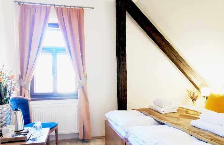 Labyrint Krumlov Standard Double Room 2