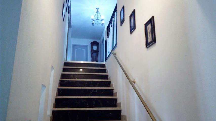 Escaliers pour accéder à l'étage
