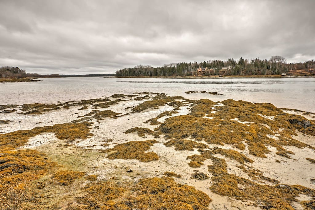 Enjoy scenic views of Maine's rocky coast and launch kayak excursions of the Jordan River from the convenience of home!