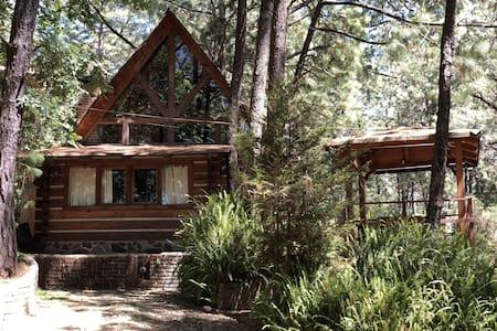 Cabin 5 Cima Calidez