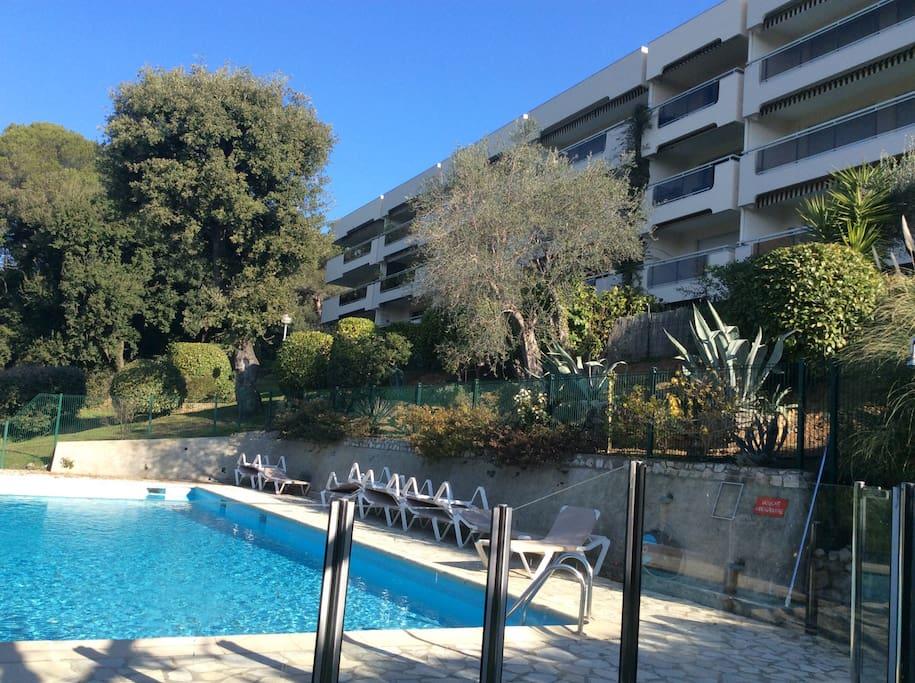2p terrasse jardin vue mer piscine appartements en - Euro plomberie piscine le cannet ...