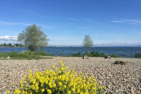 3.5Zimmer Whonung am Bodensee - Flat