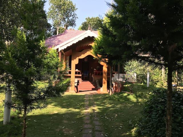 Homestay in Santhanpara, iddukki