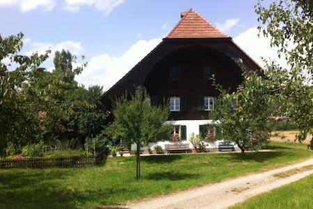 Wohnung im Grünen ( 1-3 Pers.) Gross, ruhig - Rüderswil - Daire