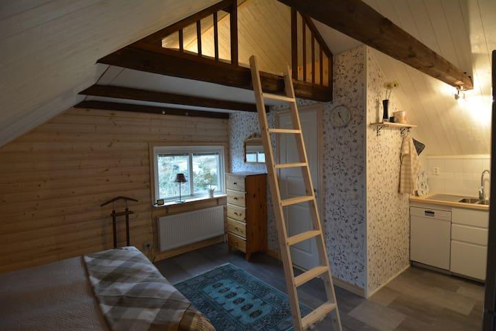 Sovdel, köksdel, badrum & loft