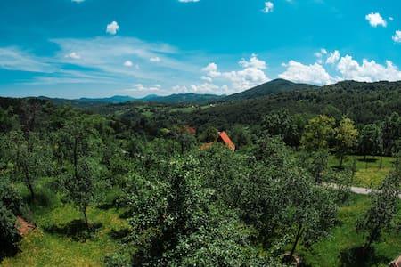 Gostilje Home with a farm View