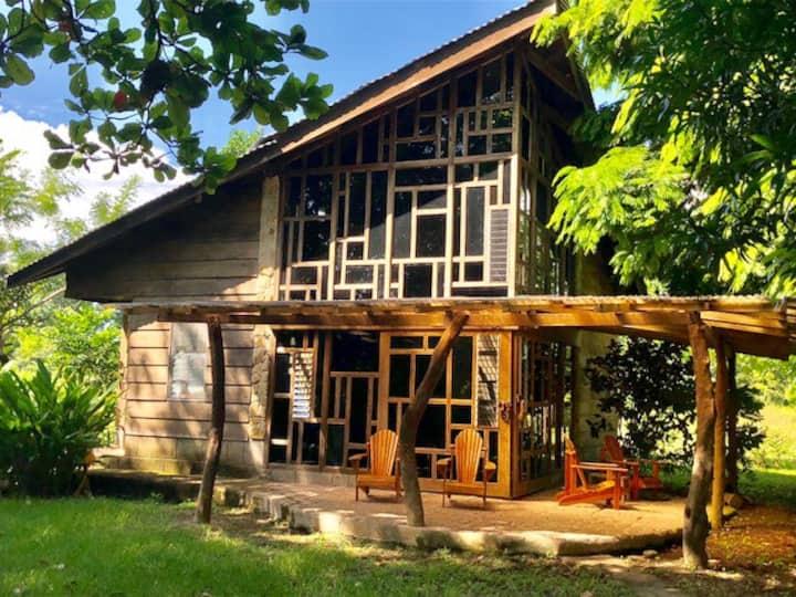 Mama Kitty's Casa Cabuya