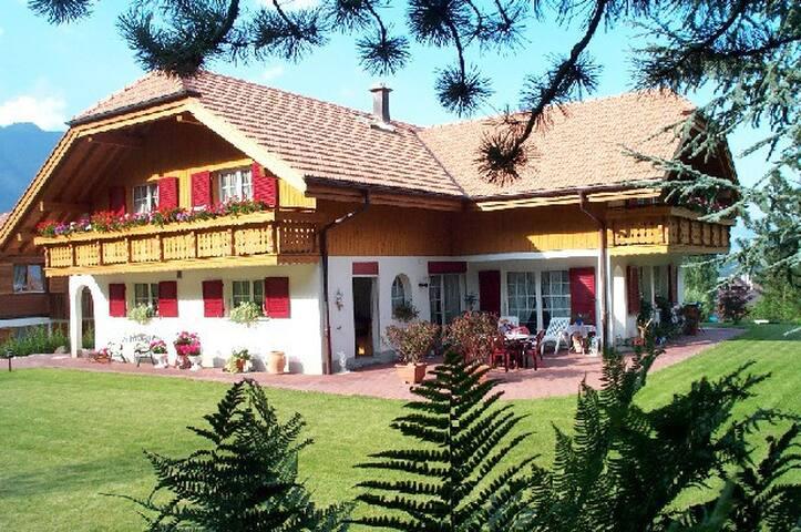 Grosse 1-Zimmer Ferienwohnung - Wilderswil - Appartement