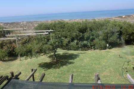 Casa das Dunas - Murtinheira plage - Quiaios - 獨棟