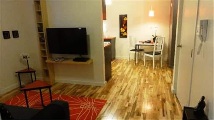 #328 Tastefully Furnished APT in Mercier Hochelaga-Maisonneuve