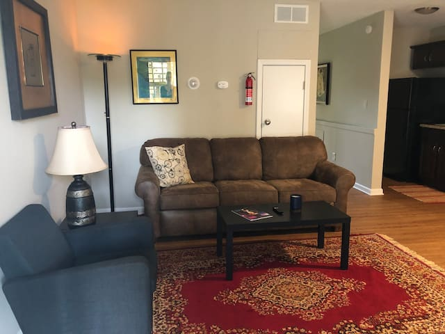 Remodeled, quiet 1 bed 1 bath in central Columbia!