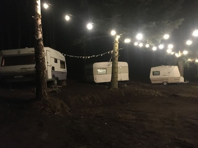 True nature experience, cozy caravans near forest.