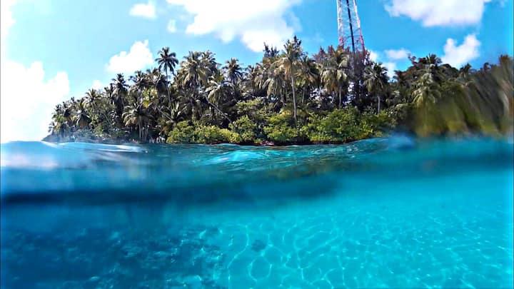 Explore Wonders at Felidhoo Island,Maldives