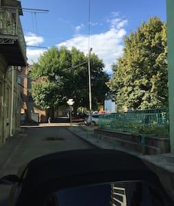 Beautiful Flat Centre of Tbilisi - Tbilisi