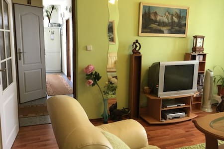 Cozy 2 bedroom apartment w/ great view & bikes 4U - Bratislava - Leilighet