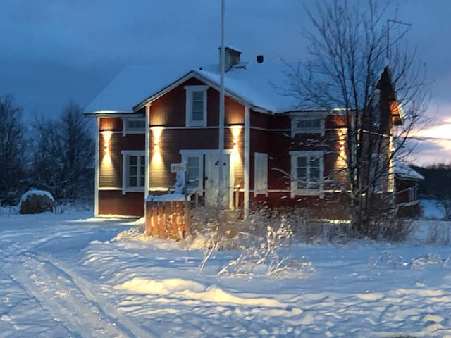 Edvin's House by the River Ivalo