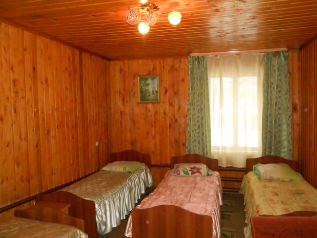 """Номер в гостинице на базе отдыха """"Березовая роща"""" - gorod Biysk - House"""