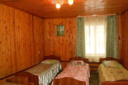 """Номер в гостинице на базе отдыха """"Березовая роща"""" - gorod Biysk - Huis"""
