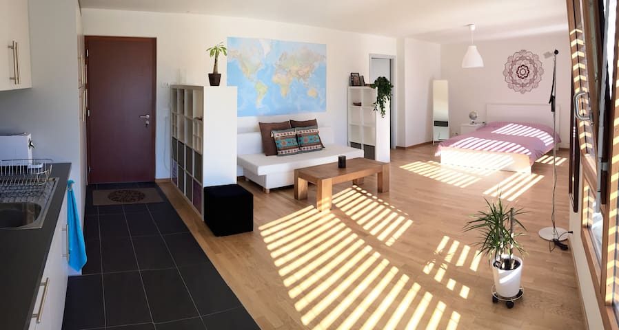 """Grand Soleil"" studio plein centre - Sion - Apartment"
