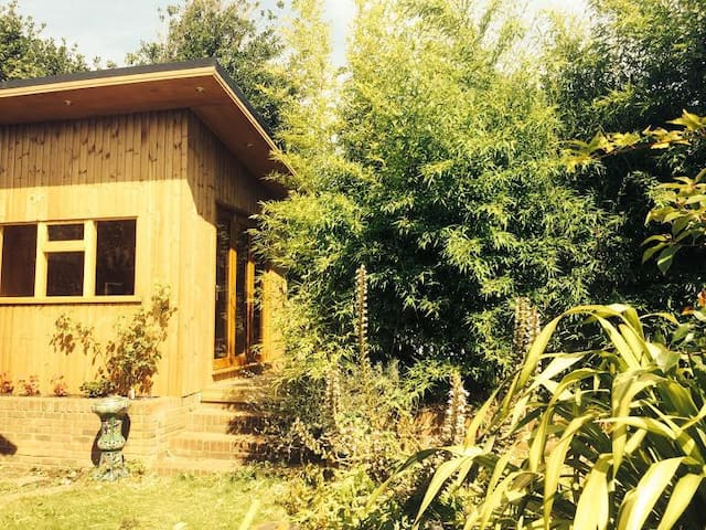 Tranquil Eco Cabin with Sauna, Central Hove.