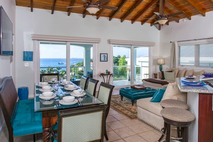 Blue Coral-3 bedroom, Walk to town, amazing views - Cruz Bay - Villa