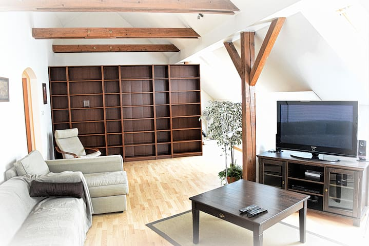 Loft apartment in the heart of Bratislava