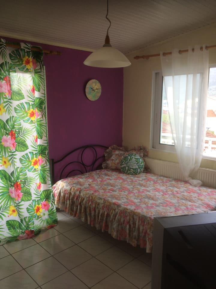 LIMENAS CENTRE APARTMENT