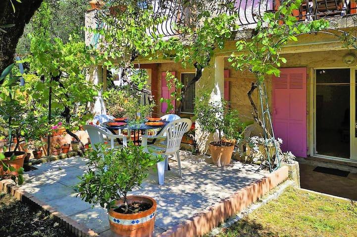 petite terrasse sous les oliviers