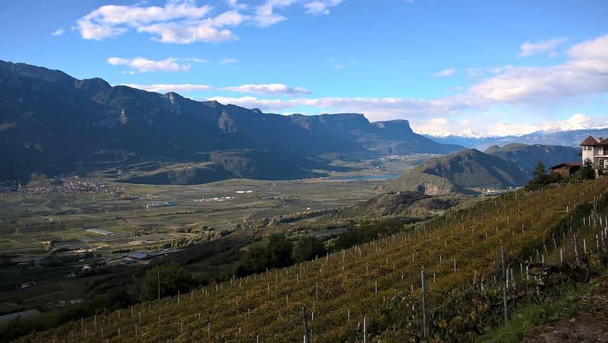 Zimmer inmitten von Weinreben im sonnigen Süden - Montan - Dům