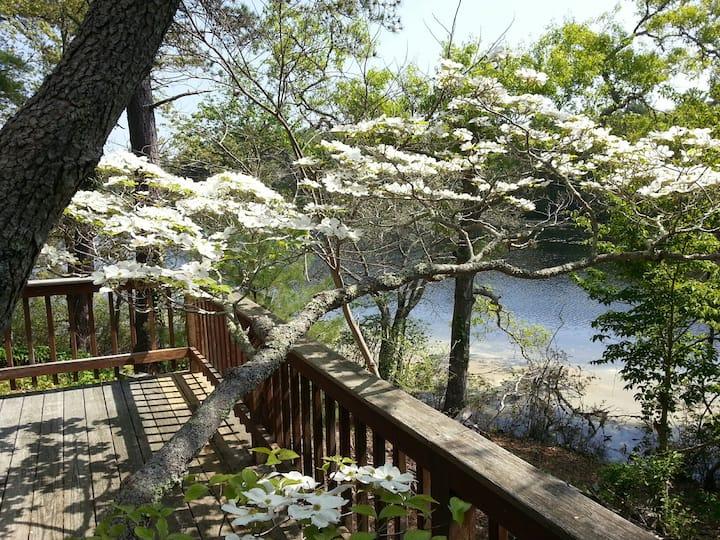 Lumbert Mill Pond House