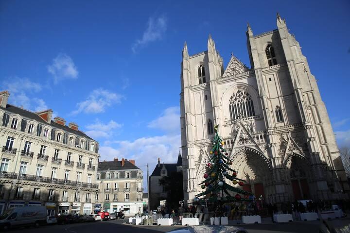 Grand 2 pièces Place de la Cathédrale - SPA/Balnéo