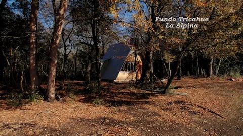 Cabañas Fundo Tricachue - Armerillo San Clemente