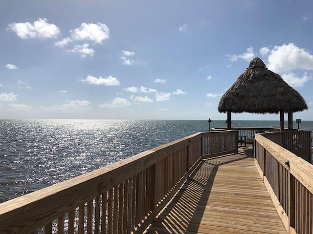 Summer Time Is Here!. Oceanfront condo /Ocean View