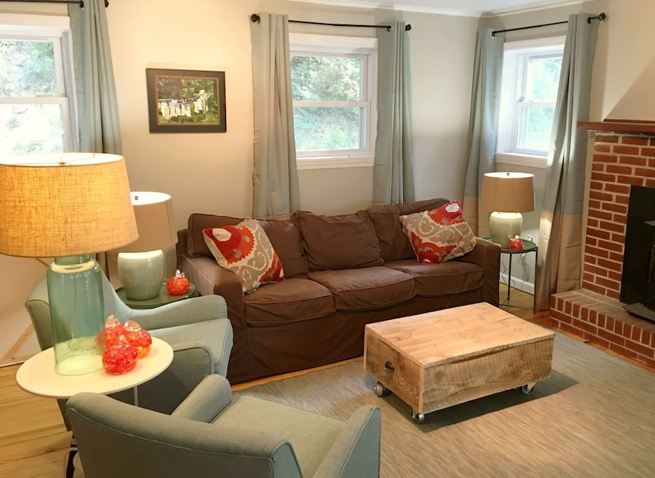 Living Room with Fold Out Sofa