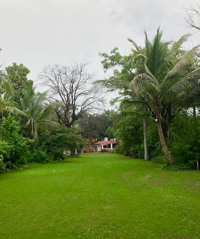 Huge private lawn - The plot is spread over an area of 18000 sq feet and most of it is covered with lawn.