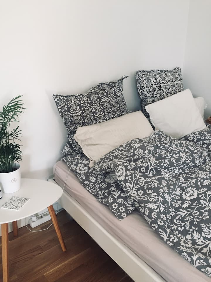 Cozy and small apartment in Roskilde