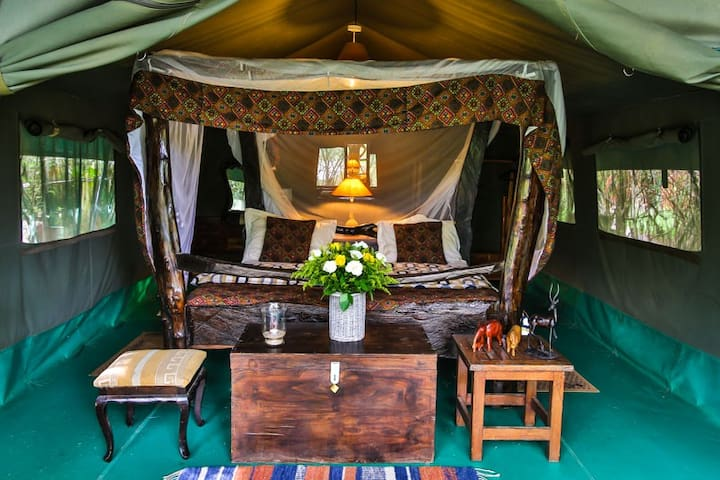 Aruba-Camp-Comfort tent - Masai Mara / Talek river