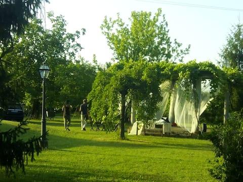 Casa de campo, árvores e silêncio