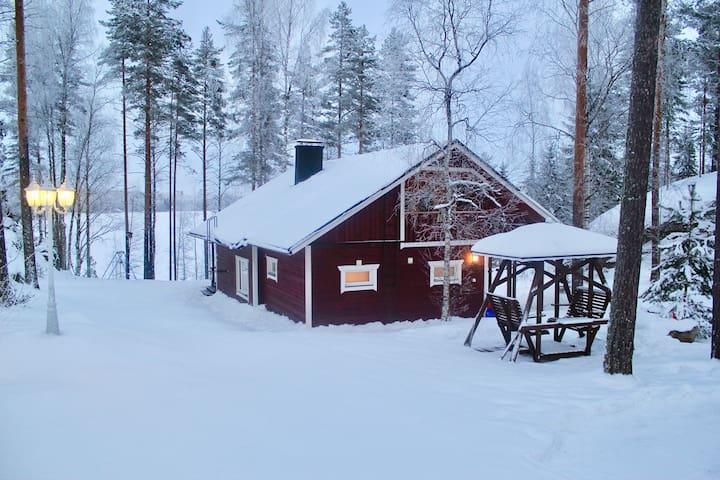 Villa Huvikalliola for 12,lake Saimaa, free WIFI