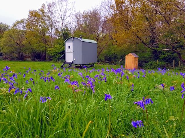 Shepherds Hut Glamping in Woodland Retreat Kent