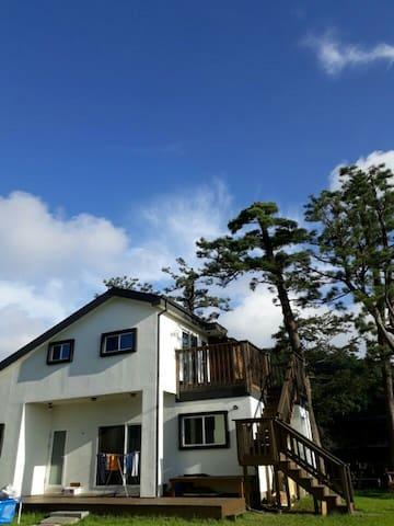 [쉼표솔하우스101호]사려니숲/쇠소깍/에코랜드/코코몽에코파크/정방&천지연폭포