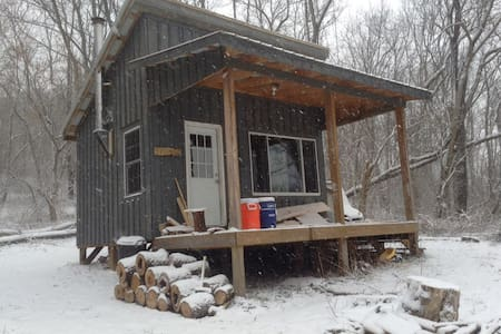 Secluded Cabin Artist Retreat #2 - Wellsburg