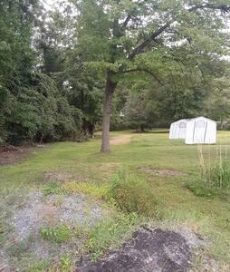 1/4 Acre Backyard