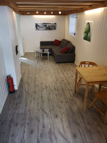 Apartment close to the university at Notodden.