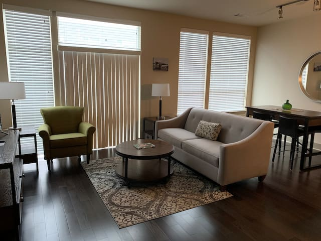 1 bedroom furnished apartment  Canton/Brewers Hill