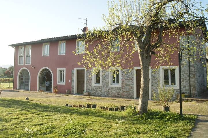 country house for garden lovers - Toscana - Leilighet