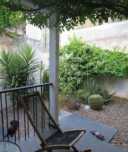 Wisteria Garden - Santarém