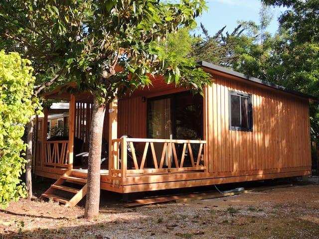 Chalet neuf tout confort de 25m² dans camping 3*